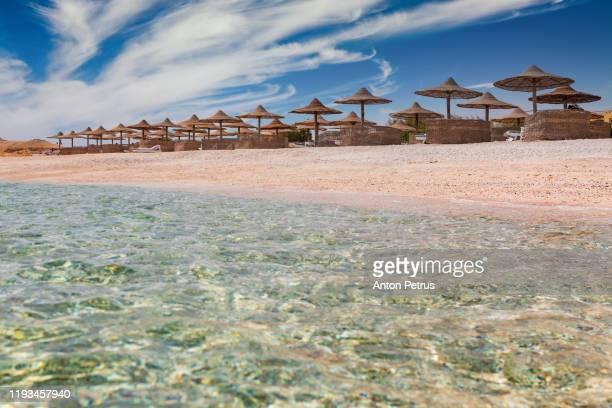 sunset on the sandy beach. red sea, egypt - シャルムエルシェイク ストックフォトと画像