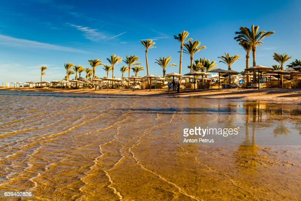 Sunset on the sandy beach. Red Sea, Egypt