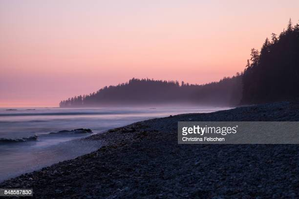 sunset on the west coast trail, canada - christina felschen stock photos and pictures