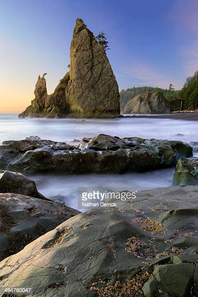 sunset on tidepools and monoliths at rialto beach - rialto beach stock photos and pictures