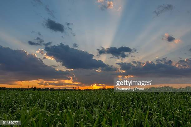 sunset on trasimeno lake - perugia stock pictures, royalty-free photos & images