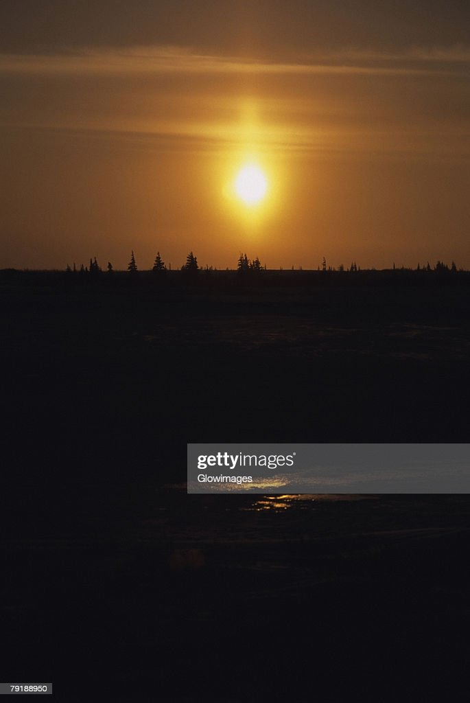 Sunset over a forest, Churchill, Manitoba, Canada : Foto de stock