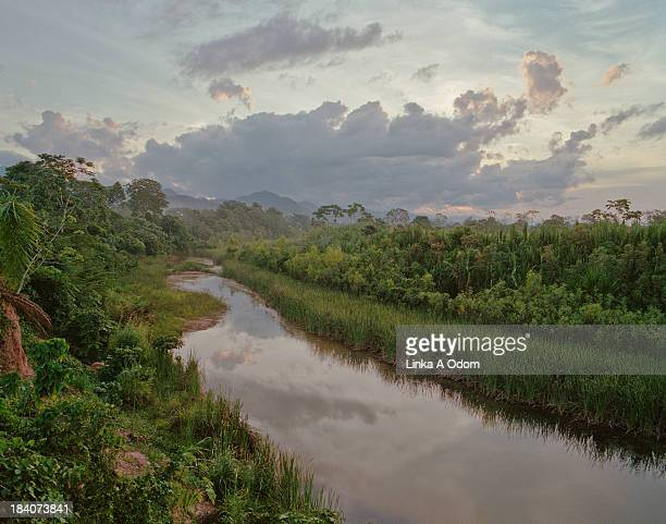 sunset over an amazon jungle river - river amazon stock pictures, royalty-free photos & images