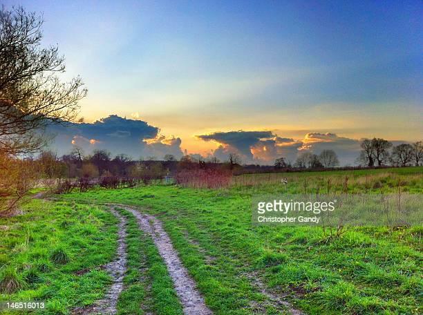 Sunset over British countryside