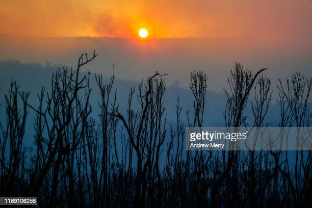 sunset over burnt mountain landscape with smoke and leafless plants after forest fire, bushfire in blue mountains, australia - nsw bushfires stock photos and pictures