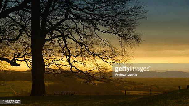 sunset over cotswold escarpment - escarpment stock pictures, royalty-free photos & images
