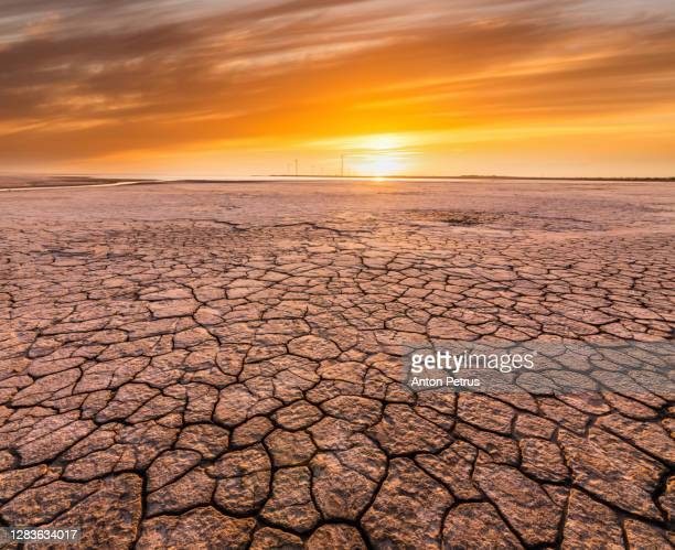 sunset over cracked soil in the desert. global warming concept - desert stock pictures, royalty-free photos & images