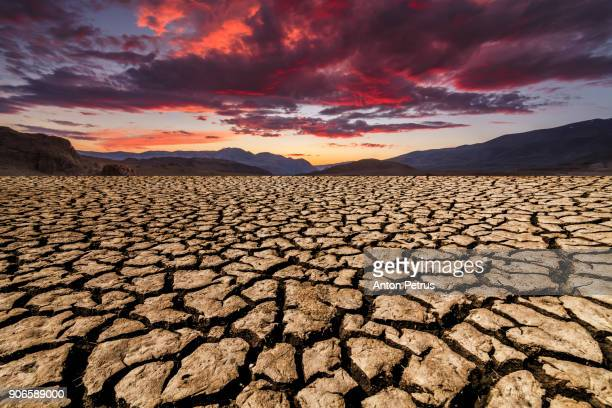 sunset over cracked soil in the desert. global warming - climate change stock pictures, royalty-free photos & images