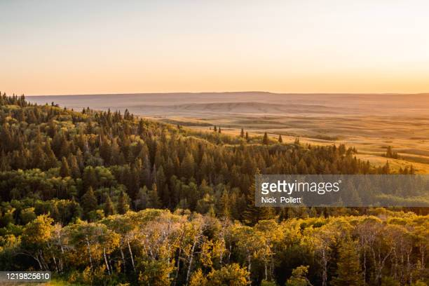 sunset over cypress hills - saskatchewan stock pictures, royalty-free photos & images
