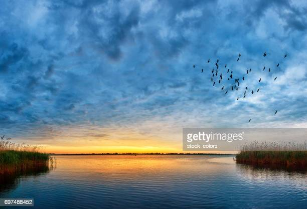sunset over danube river - sunset lake stock photos and pictures