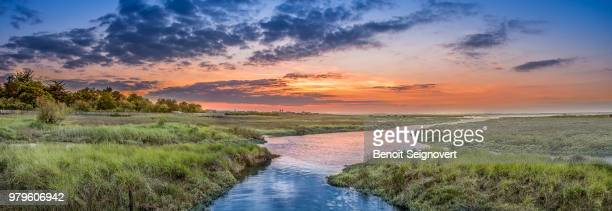 Sunset over green land, Arcachon, Gujan-Mestras, France