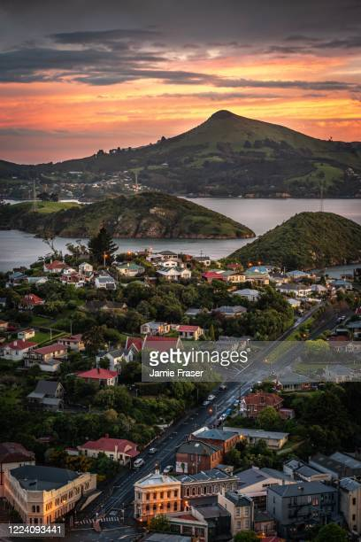 sunset over harbour cone (hereweka), and port chalmers, dunedin, new zealand - dunedin new zealand stock pictures, royalty-free photos & images
