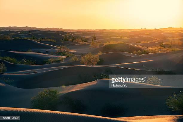 Sunset over Kubuqi Desert, near Erdos, Inner Mongolia, China.
