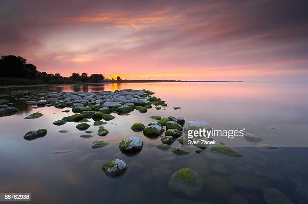 sunset over lake peipsi, estonia, august - estland bildbanksfoton och bilder