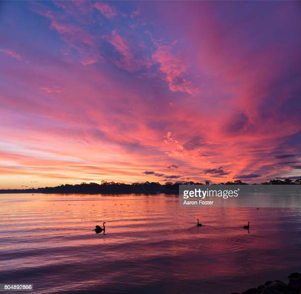 sunset over lake - sunset stock pictures, royalty-free photos & images