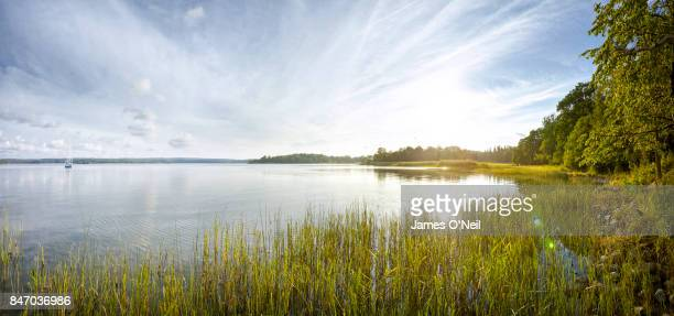 sunset over lake with foreground reeds and boat on lake - lago - fotografias e filmes do acervo