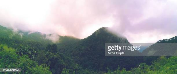 sunset over mountains. central himalayan subtropical pine & oak forest. - neha gupta stock pictures, royalty-free photos & images