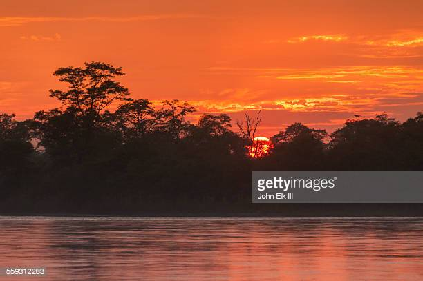 sunset over narayani river and jungle - chitwan stock pictures, royalty-free photos & images