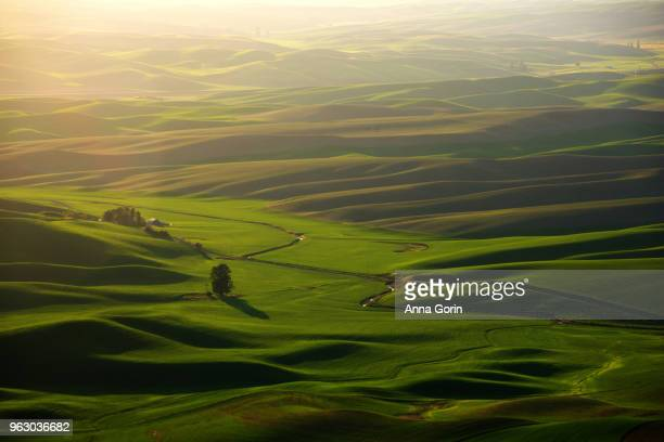 Sunset over Palouse countryside in spring seen from Steptoe Butte State Park at sunset, Washington state
