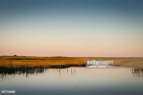 sunset over pond, florida, usa - everglades national park stock pictures, royalty-free photos & images