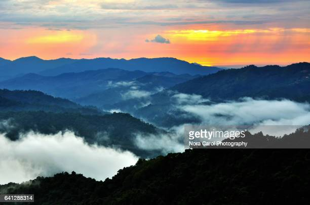 sunset over sabah borneo jungle - island of borneo stock pictures, royalty-free photos & images