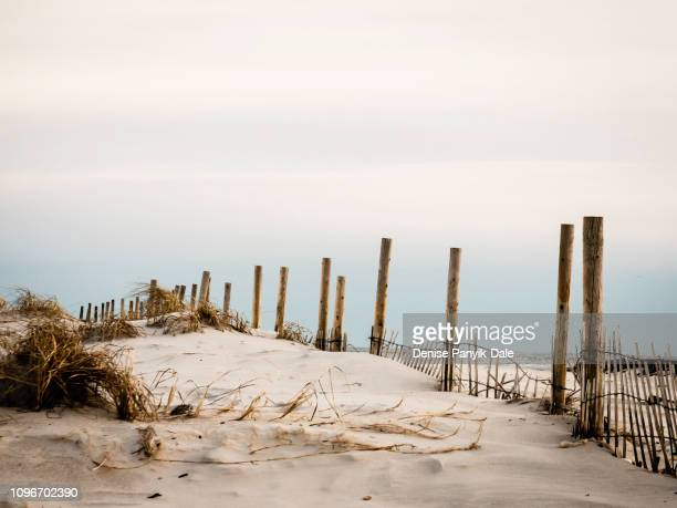 sunset over sand dunes with fence in foreground - panyik-dale stock photos and pictures