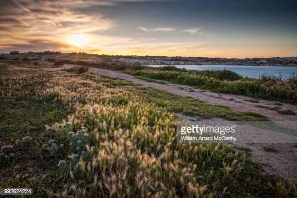 sunset over st. thomas bay - paisajes de st thomas fotografías e imágenes de stock