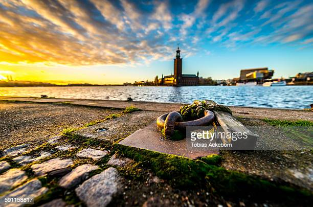 sunset over stockholm - nobel prize stock pictures, royalty-free photos & images