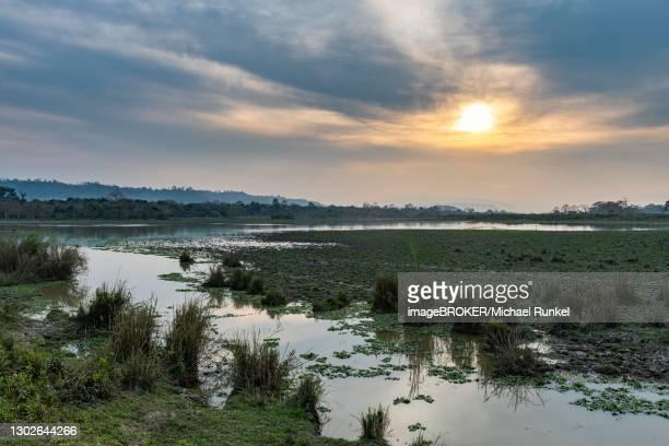sunset over the brahmaputra river, unesco world heritage site, kaziranga national park, assam, india - kaziranga national park stock pictures, royalty-free photos & images