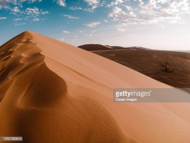 sunset over the dunes in namibia - ナミブ砂漠 ストックフォトと画像