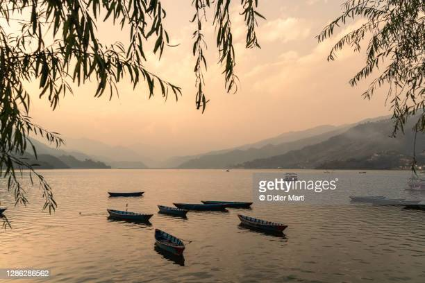 sunset over the famous phewa lake in pokhara in nepal - pokhara stock pictures, royalty-free photos & images