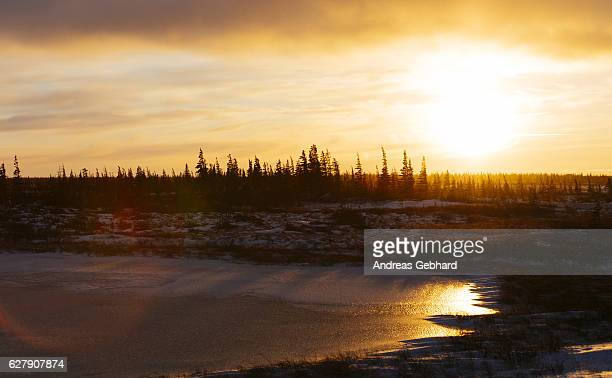 Sunset over the frozen tundra