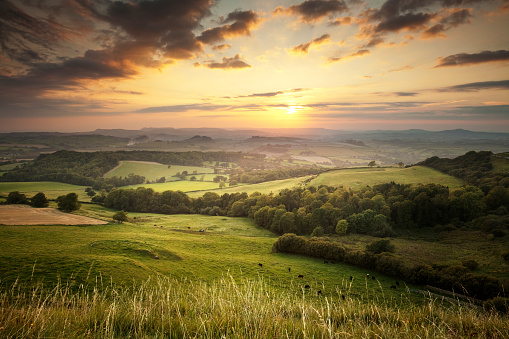 Sunset over the green hills countryside in England, Dorset 147989111
