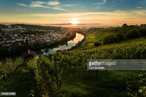 sunset over the neckar - baden württemberg stock photos and pictures