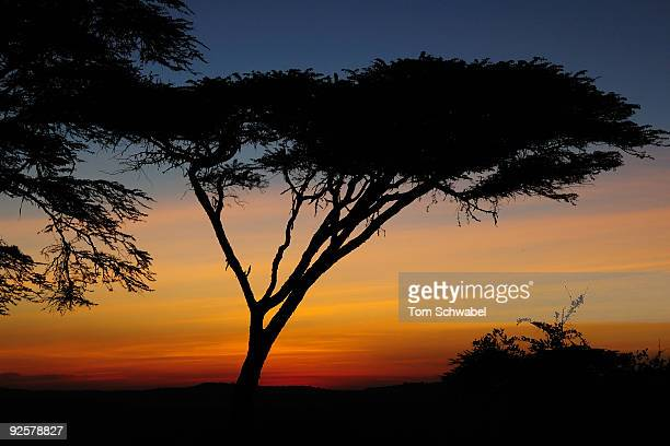 Sunset over the Ngorongoro