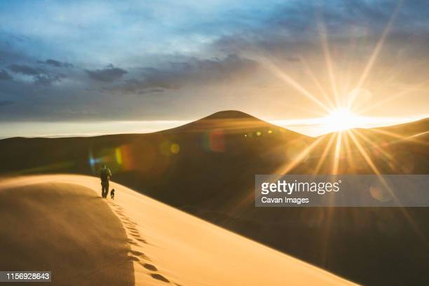 sunset over the sand dunes illuminates hiker footprints at last light - great sand dunes national park stock pictures, royalty-free photos & images