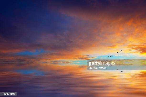 sunset over the sea - generic location stock pictures, royalty-free photos & images