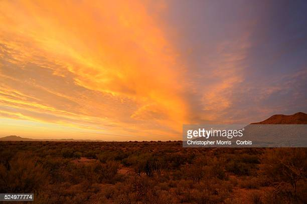 A sunset over the Sonora Desert which is travelled by migrants to illegally enter into the United States near Sasabe Arizona Migrants must walk for...