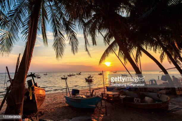 sunset over the tropical beach with coconut palm and boat at pattaya , thailand . pattaya is a paradise in thailand. silhouettes of palm trees and amazing cloudy sky on sunset at tropical beach. - goa stock pictures, royalty-free photos & images