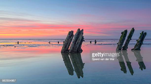 "sunset over the waddensea - ""sjoerd van der wal"" imagens e fotografias de stock"