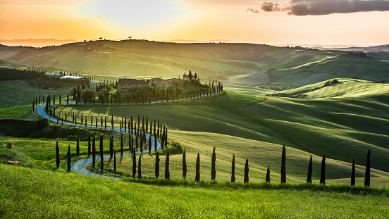 Sunset over the winding road with cypresses in Tuscany 498131251
