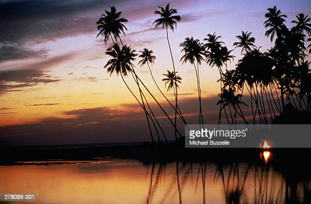 Sunset over tropical beach,palms in silhouette,camp fire on shore