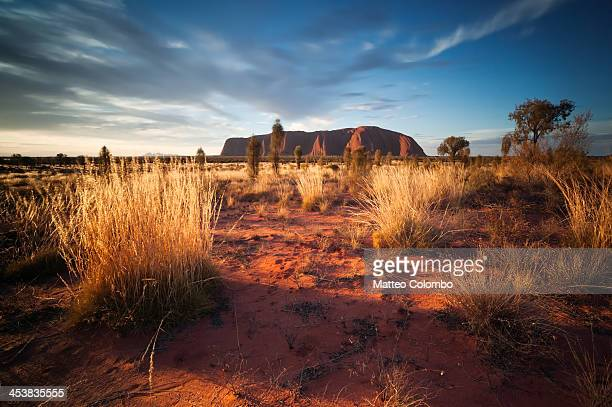 Sunset over Uluru, in the red sand desert of Northern Territory, Australia. Uluru, also known as Ayers Rock, is a large sandstone rock formation in...