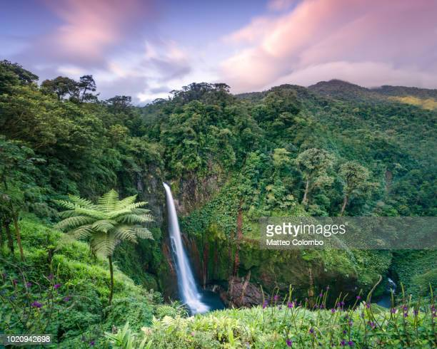 sunset over waterfall in the green forest of costa rica - costa rica stock pictures, royalty-free photos & images