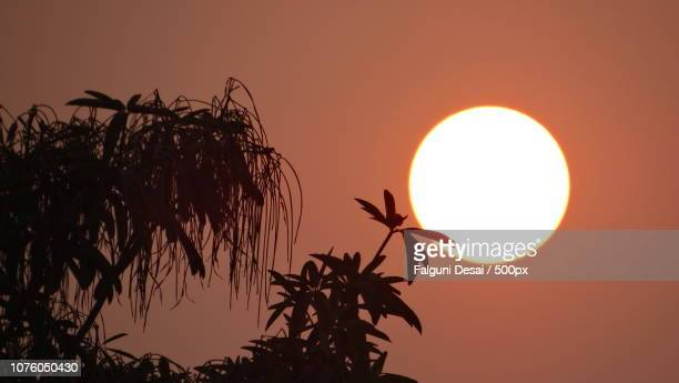 sunset - falguni stock pictures, royalty-free photos & images