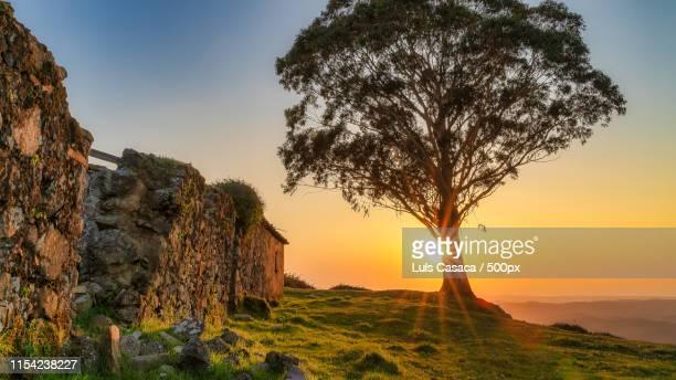 sunset - monchique stock pictures, royalty-free photos & images