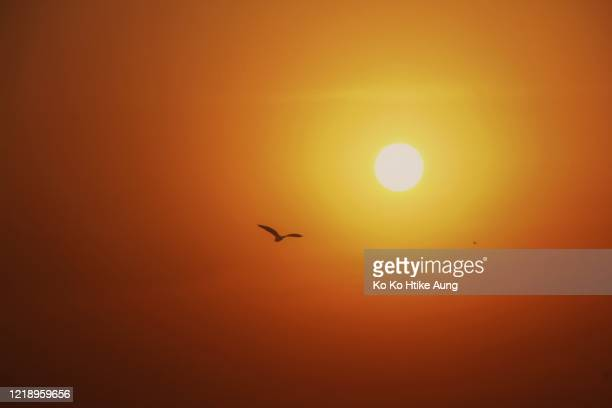 sunset - ko ko htike aung stock pictures, royalty-free photos & images