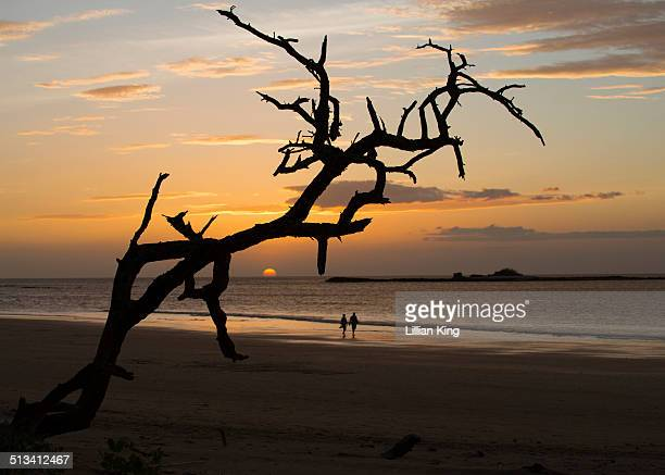 sunset - playa tamarindo fotografías e imágenes de stock