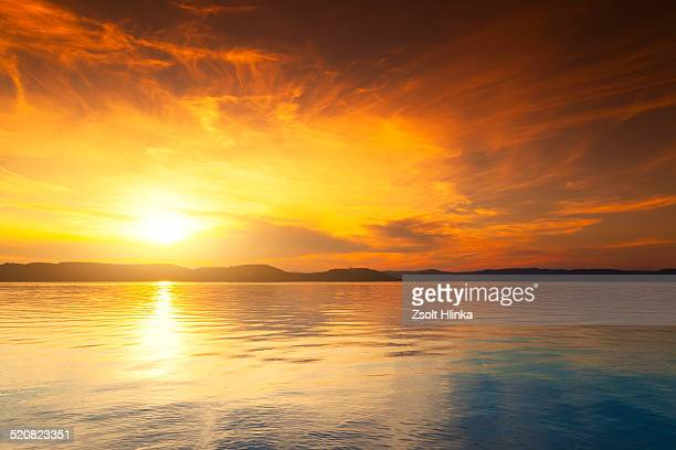 sunset - blue bear stock photos and pictures
