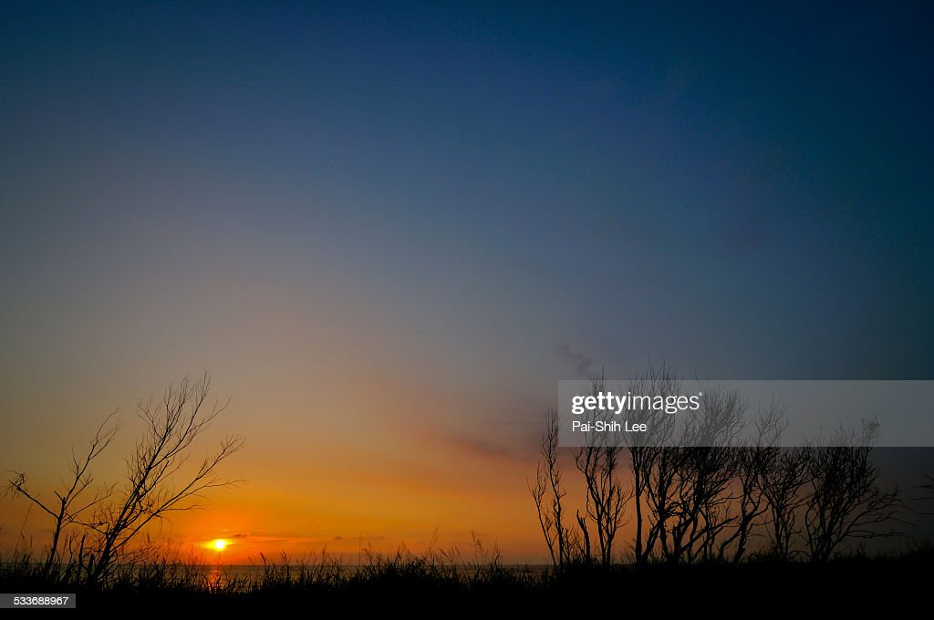 Sunset : Foto stock